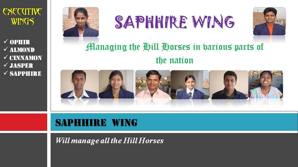 SAPPHIRE WING